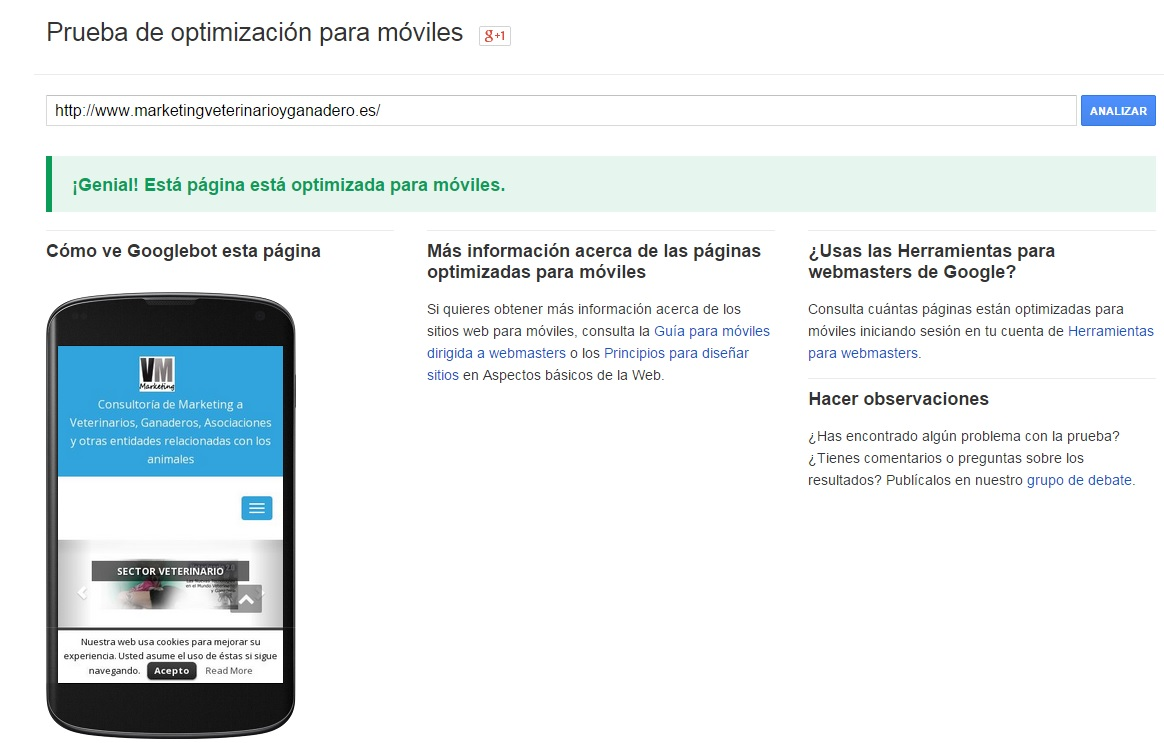 web optimizada para moviles o responsive