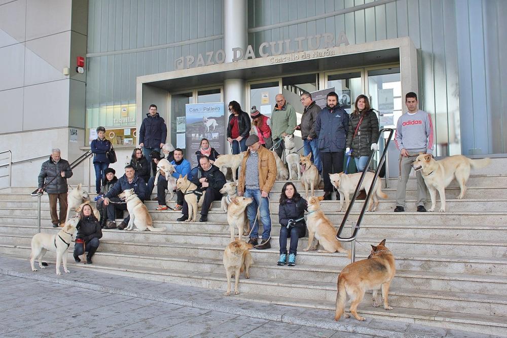 voluntarios en la grabación del anuncio el perro ideal